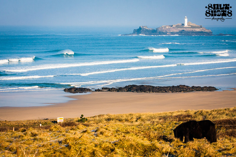 February Surf Report Godrevy